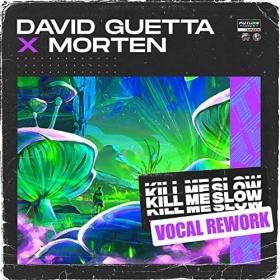 DAVID GUETTA X MORTEN - KILL ME SLOW (VOCAL REWORK)